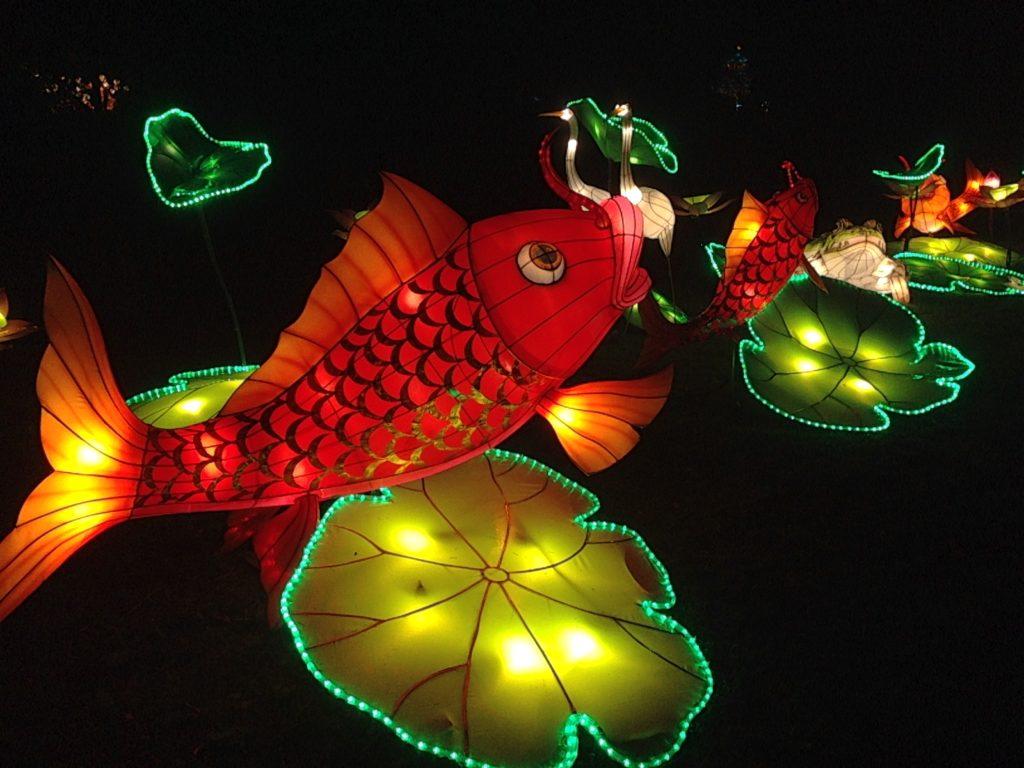Lanterne poisson